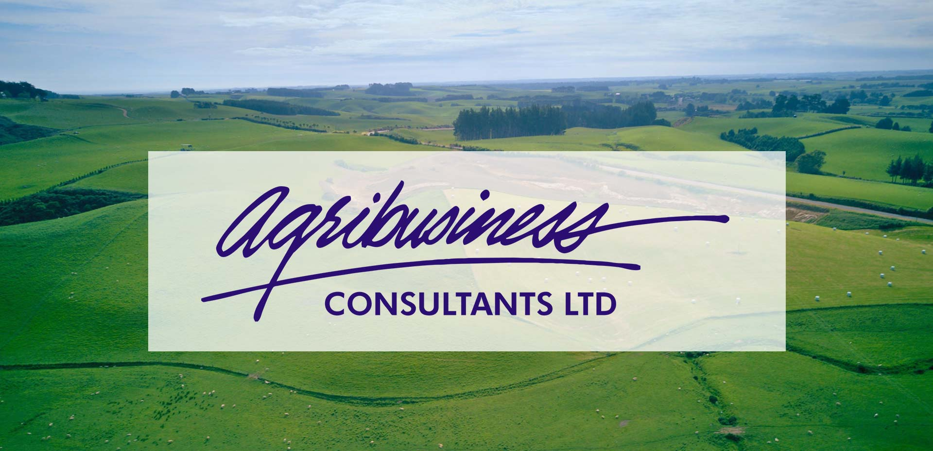 Welcome To Agribusiness Consultants Ltd